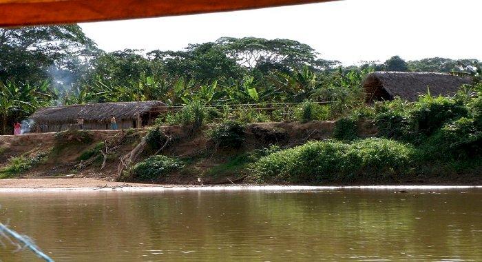 O populație indigenă din pădurea amazoniană ar putea deține cheia pentru încetinirea procesului de îmbătrânire